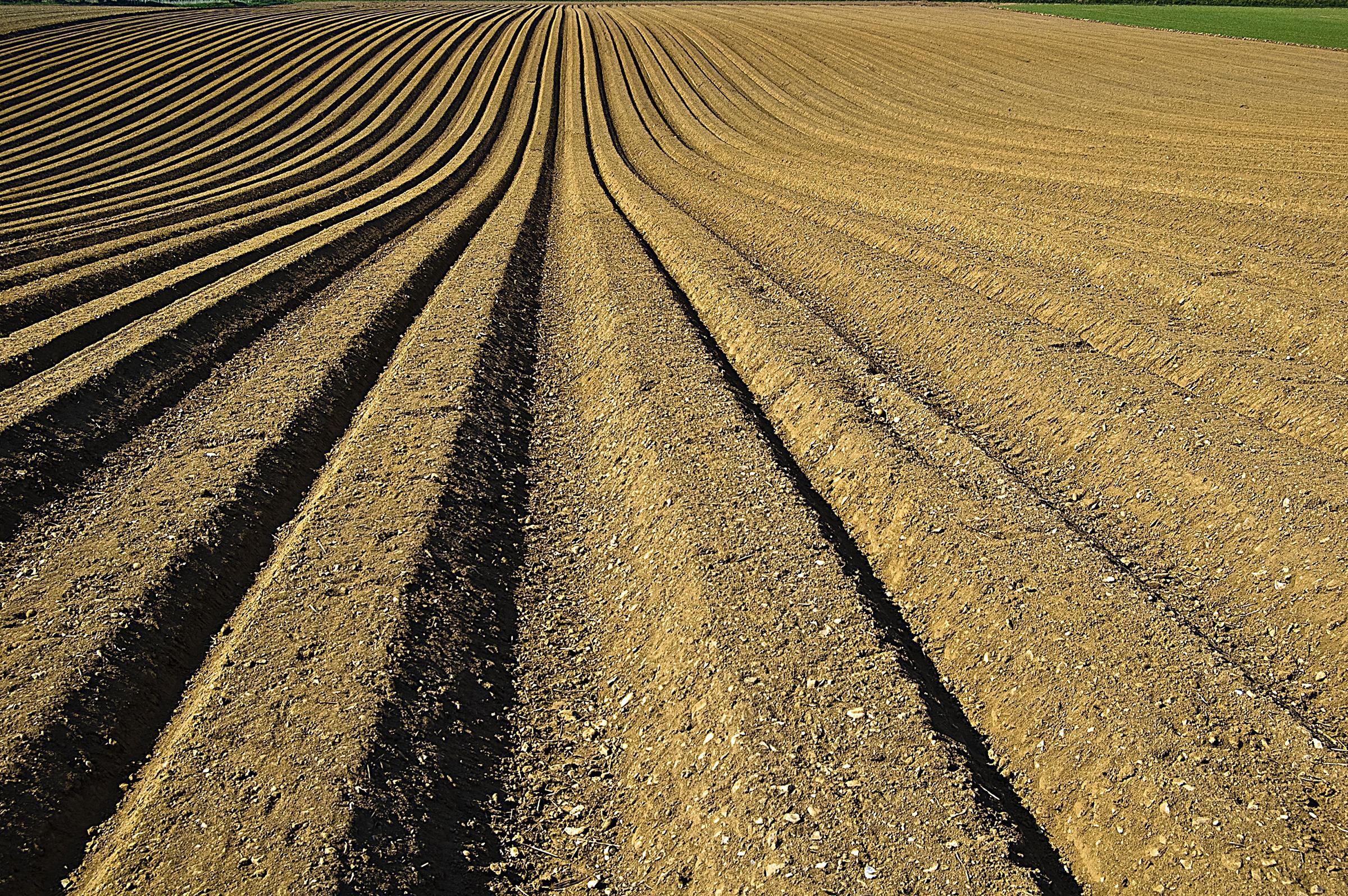 Composición física y química del suelo agrícola